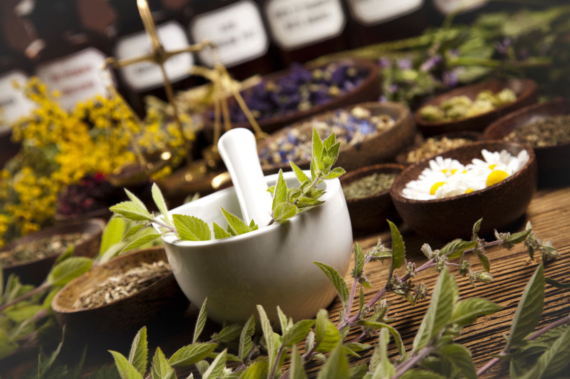bienfaits-des-plantes-pour-la-peau.jpg